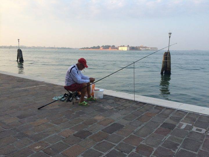 Fish of the Venetian Lagoon