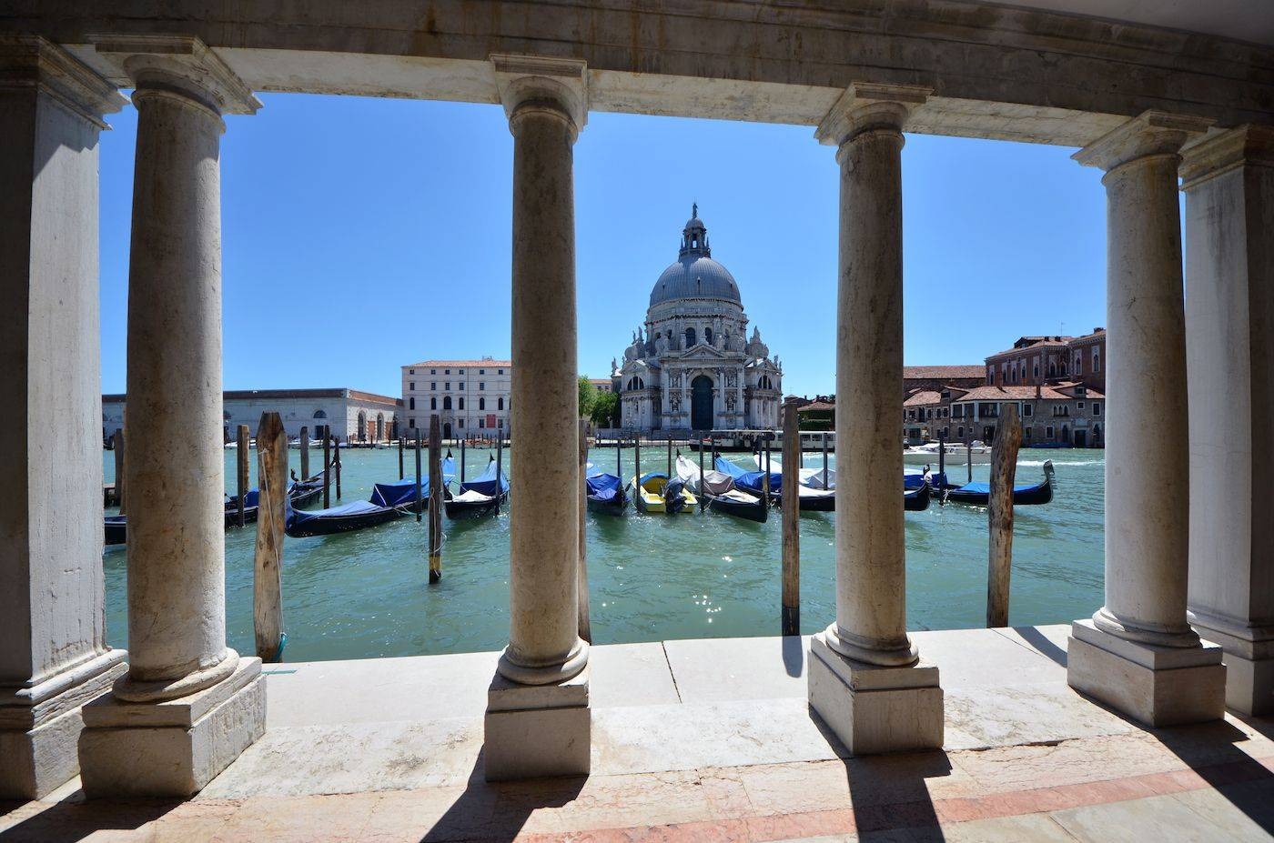 the water taxi will take you directly to the Palace water front on the Grand Canal