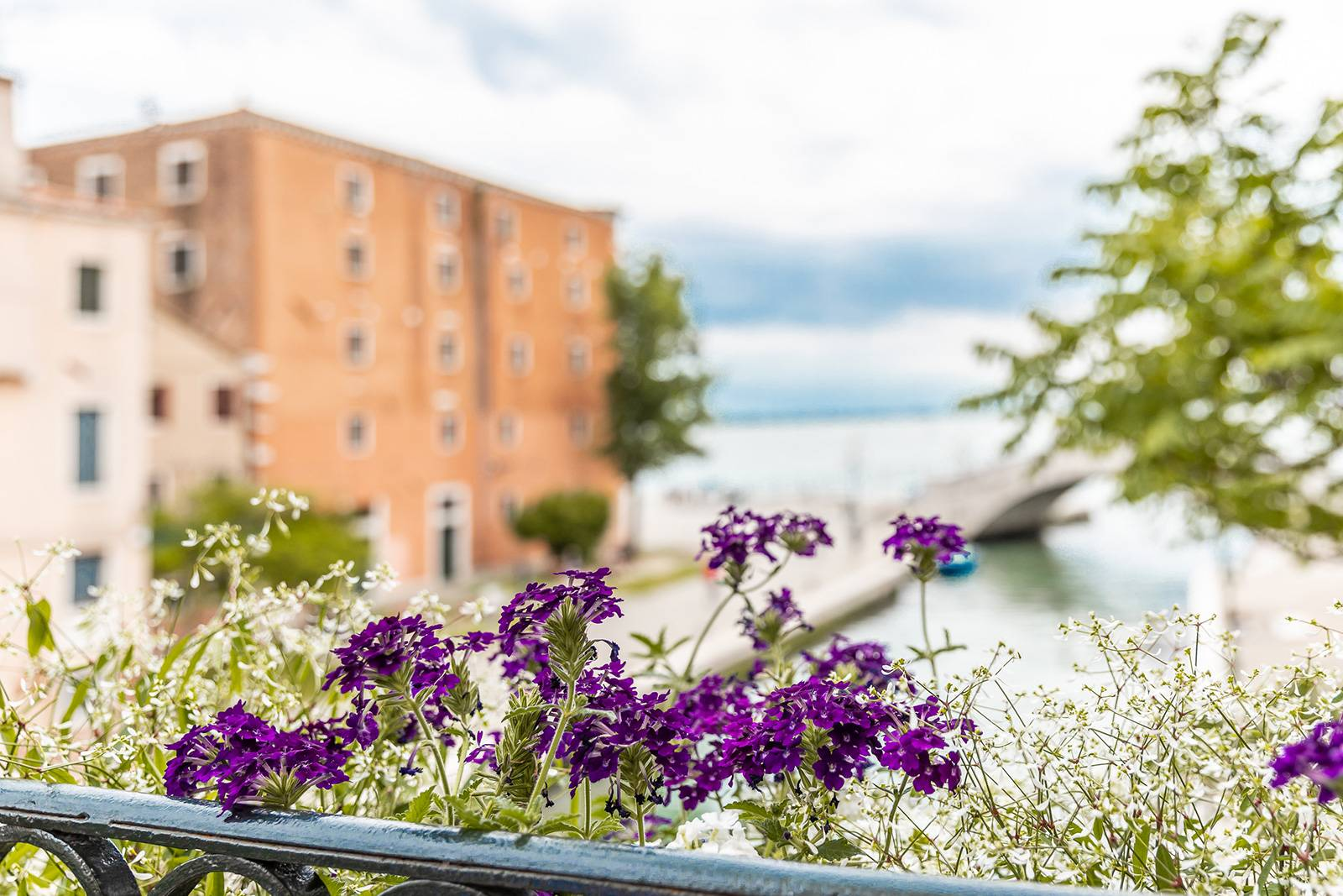 enjoy your holiday in Venice at the Alcova apartment!